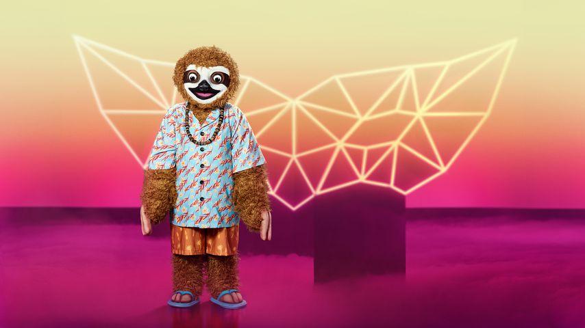 """Rateteam: Enttarnen diese """"Masked Singer""""-Hinweise Faultier?"""