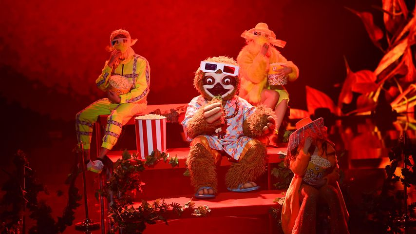 "Das Faultier bei ""The Masked Singer"""