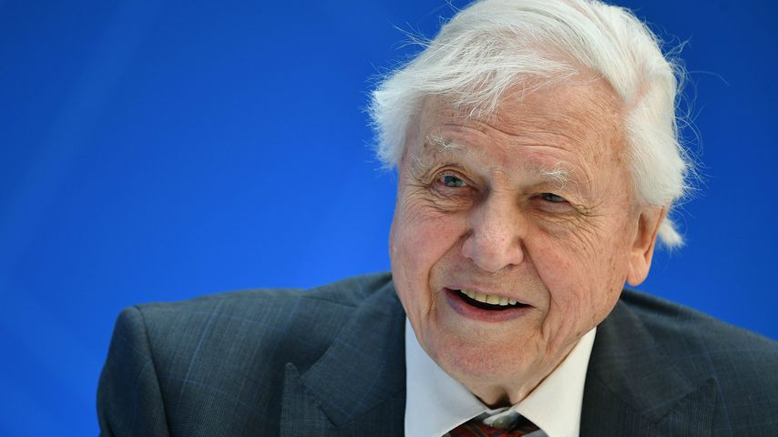 David Attenborough in Washington