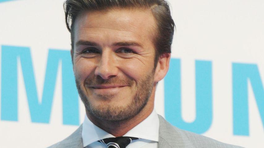 Babyboom bei den Beckhams? David will Nachwuchs!
