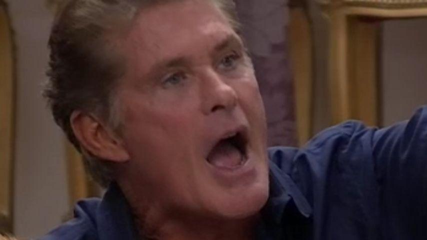 Hasselhoff-Flucht: War ihm Promi BB etwa zu blöd?