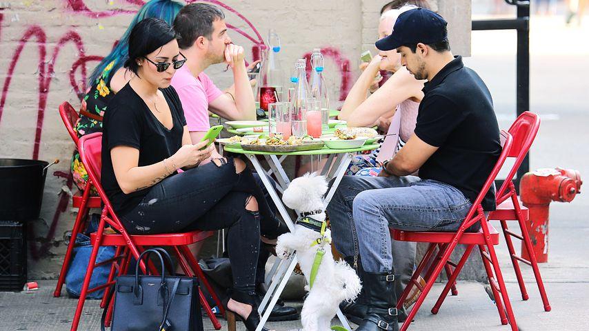 Demi Lovato: Date mit Wilmer macht Hund Buddy eifersüchtig