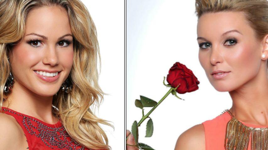 Vox bestätigt: Bachelor-Girls kochen gegen Katja