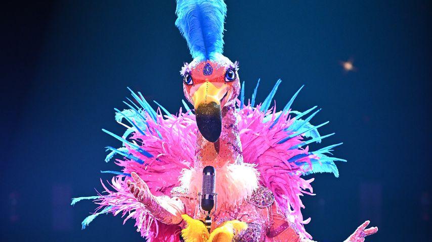 "Der Flamingo bei ""The Masked Singer"""