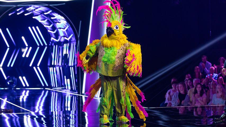"""Der Kakadu von """"The Masked Singer"""" 2019"""