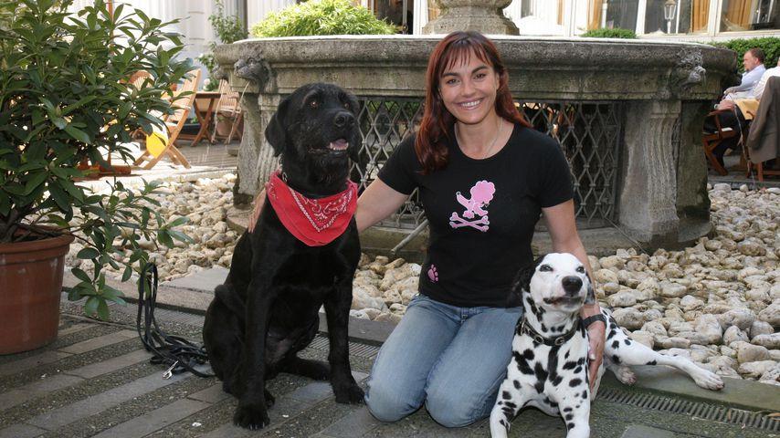Tierisch Diana Eichhorn Wurde Vom Hund Verkuppelt Promiflash De