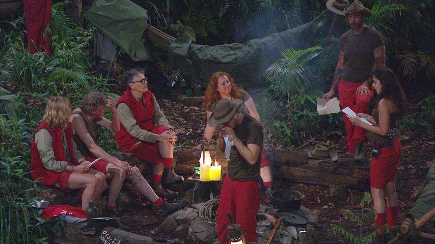 Was? Kein überraschendes Dschungel-Aus an Tag 11!