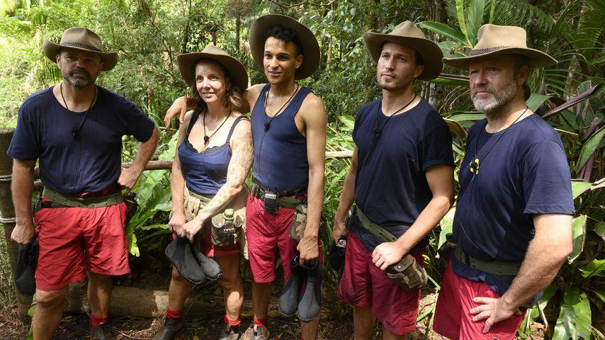 RTL-Show: Prince Damien ist der neue Dschungel-König