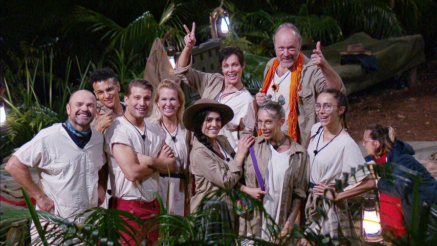 Das Dschungelkamp