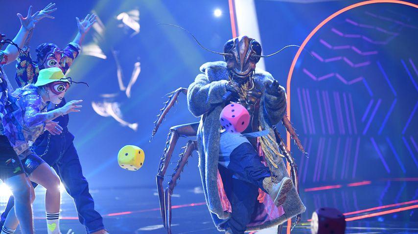 "Die ""The Masked Singer""-Kakerlake"