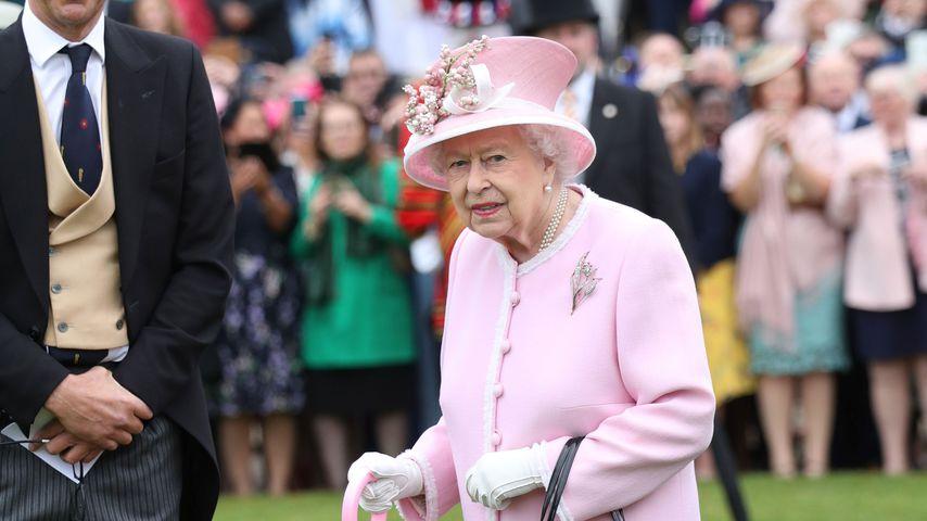 Horror für Queen Elizabeth: Rattenplage im Buckingham-Palast