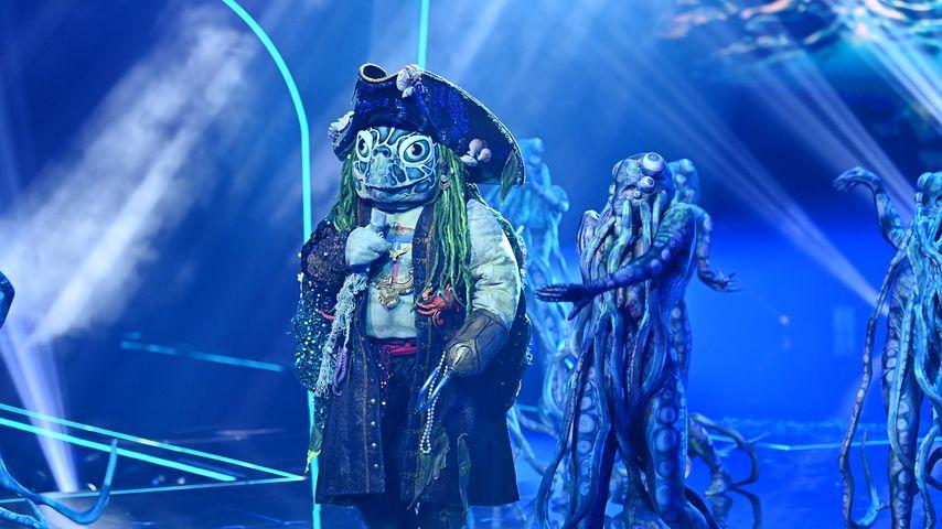 """Finale: Alle Indizien zur """"The Masked Singer""""-Schildkröte"""