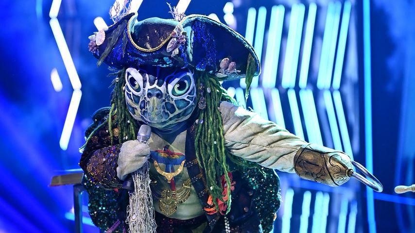 """The Masked Singer""-Schildkröte: Papagei-Indiz enträtselt?"