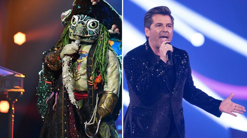 """Collage: Die """"The Masked Singer""""-Schildkröte und Thomas Anders"""