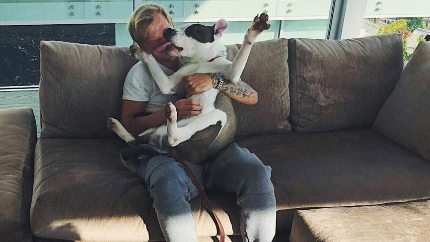 DJ Avicii in seiner Villa in den Hollywood Hills