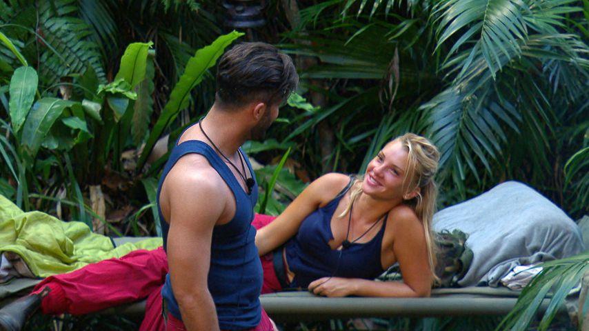 Domenico & Evelyn: Versöhnung beim Dschungel-Wiedersehen!