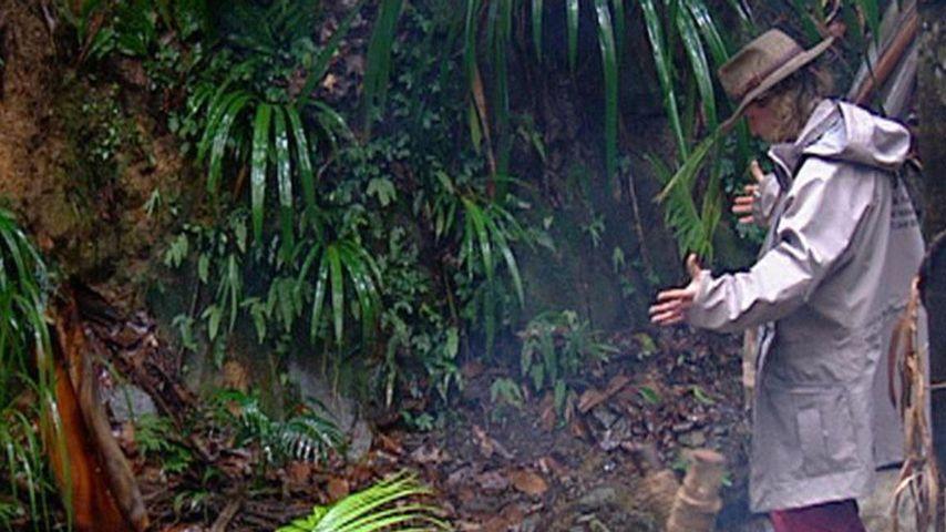Regenprognose: Fällt das Dschungelcamp ins Wasser?