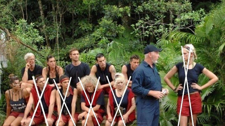 Wer folgte Sarah Knappik aus dem Dschungelcamp?