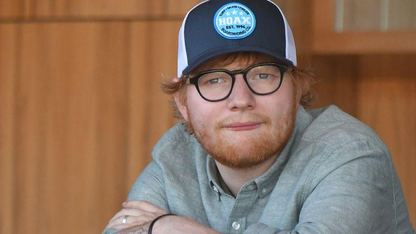 Baumfällen für Ed Sheeran-Konzert: Update aus Düsseldorf!