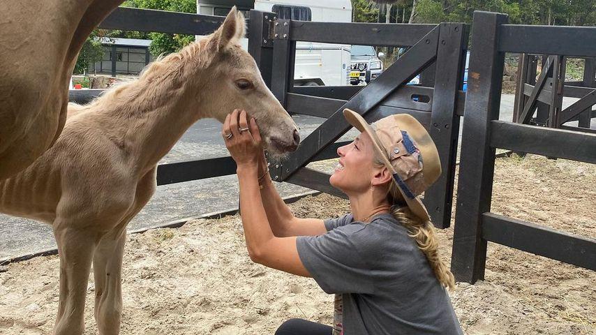 Geburtsvideo: Hier bringt Elsa Pataky ein Fohlen zur Welt