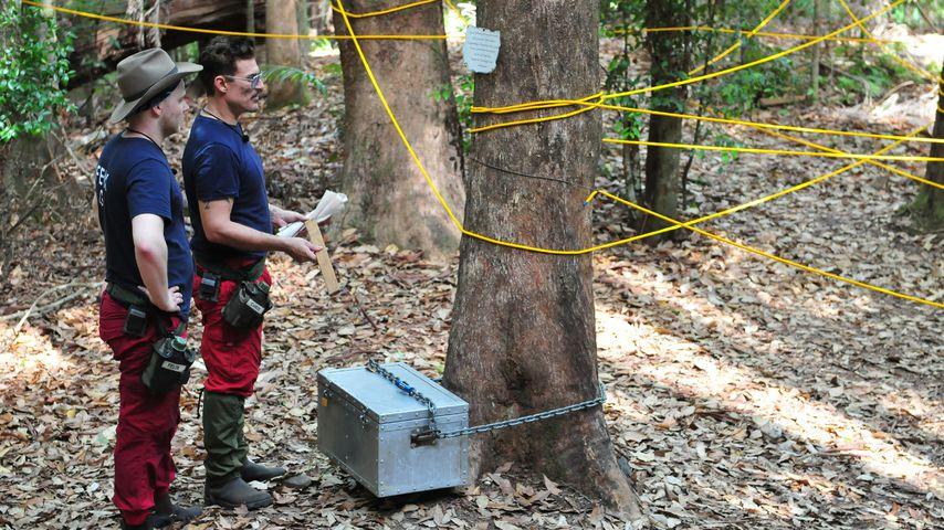Chris und Felix meistern die erste Dschungel-Schatzsuche!