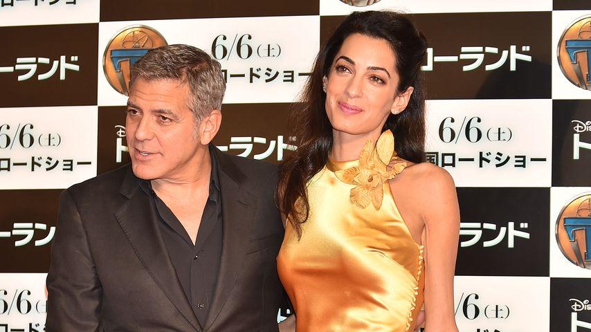George Clooney: Ich bin jetzt die reizende Begleiterin!
