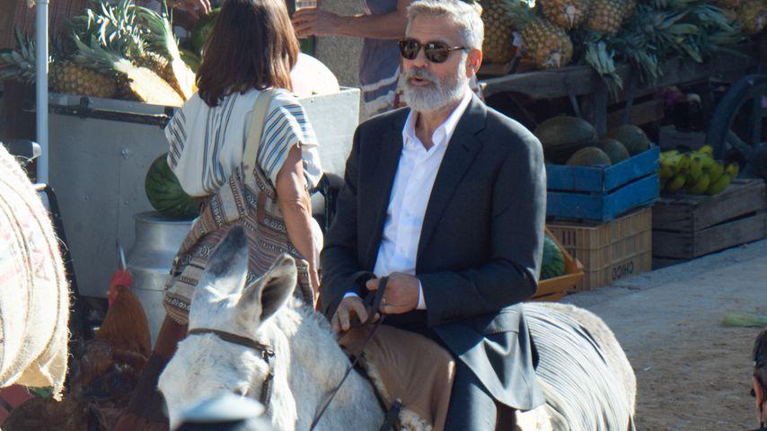Für Werbe-Spot: George Clooney auf einem Esel unterwegs!