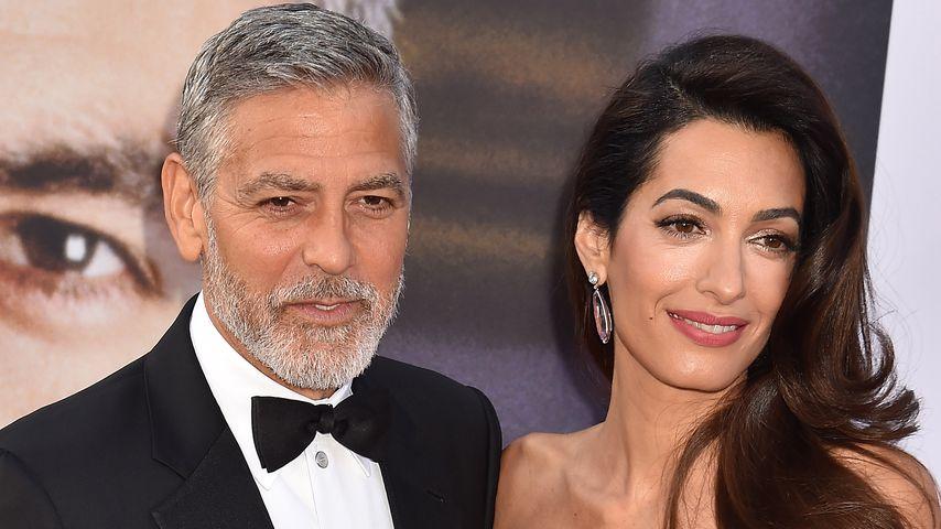 Deshalb fehlten George & Amal Clooney bei Royal-Wedding
