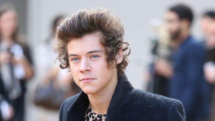 Musiker Harry Styles