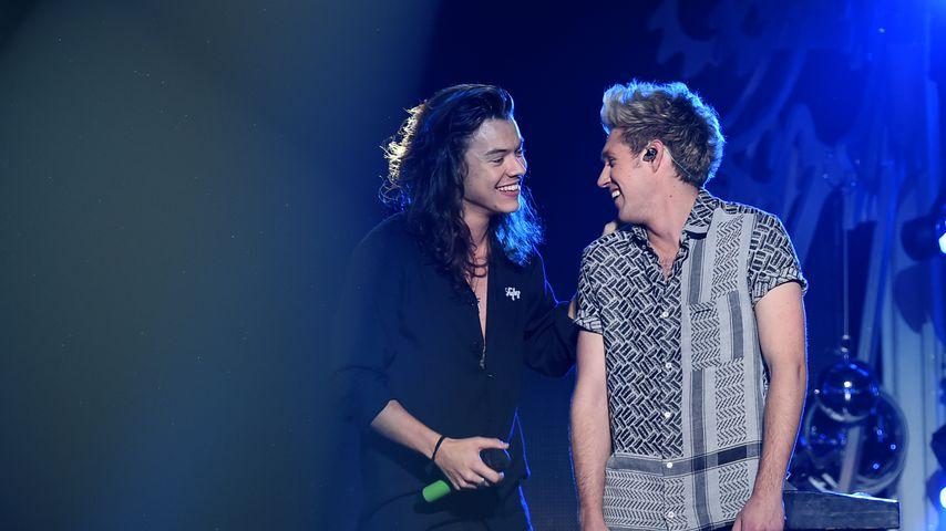 Harry Styles und Niall Horan auf der Bühne