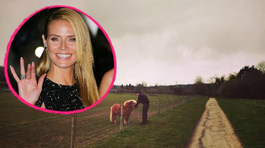Im Pony-Wahn: Ländliches Lotterleben verzaubert Heidi Klum