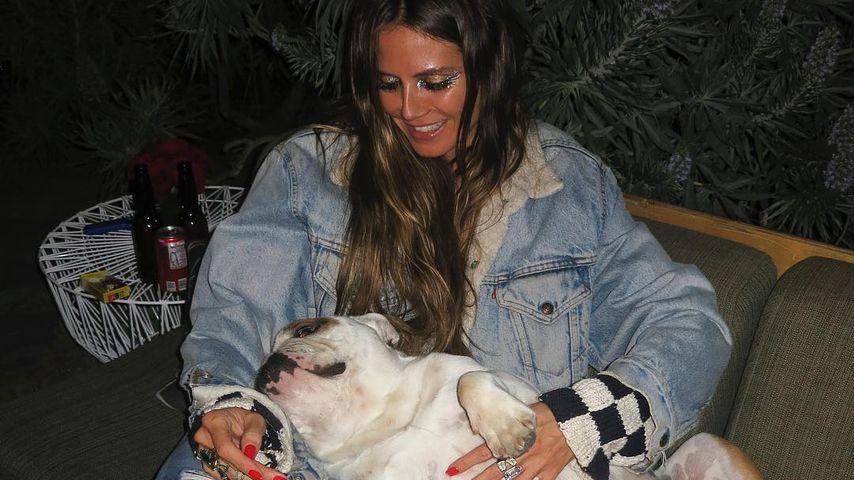 Nach Tod von Bills Hund: Auch Heidi Klum ist tief getroffen!