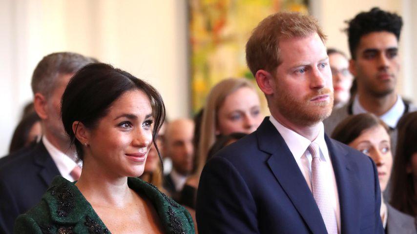 Royaler TV-Experte: Baby Sussex wirklich schon auf der Welt?