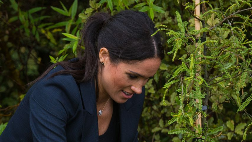 Herzogin Meghan am 30. Oktober in Auckland, Neuseeland