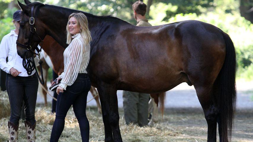 Hilary Duff bei Dreharbeiten mit einem Pferd im Central Park