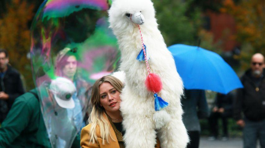 """""""Lizzie McGuire""""-Drehstart: Hilary Duff mit Alpaka in N.Y."""