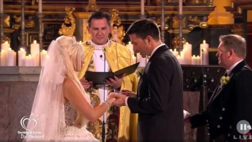 Mega Hochzeitserfolg: Die Katze übertrifft sich selbst!