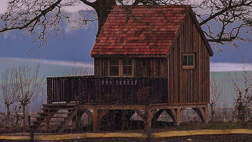 Das Baumhaus von Harper Beckham