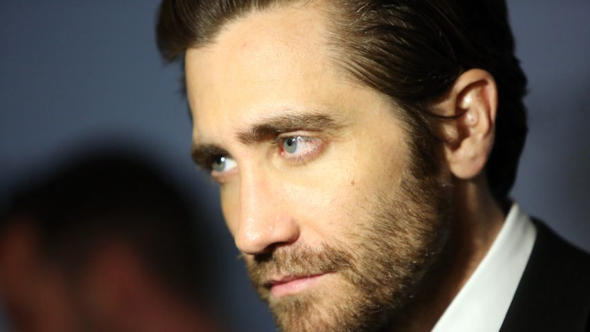Jake Gyllenhaal, Hollywood-Star