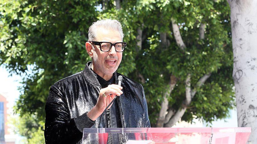 Jeff Goldblum bei der Enthüllung seines Sterns auf dem Walk of Fame in Hollywood