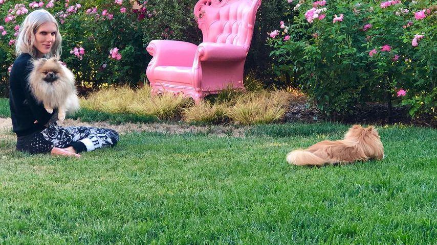 Jeffree Star mit zwei seiner Hunde im Garten