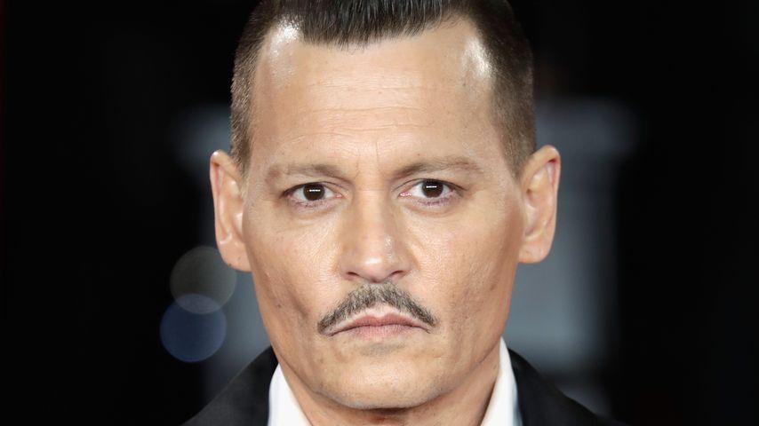 """Johnny Depp will Trump """"ermorden"""" – das Weiße Haus reagiert"""