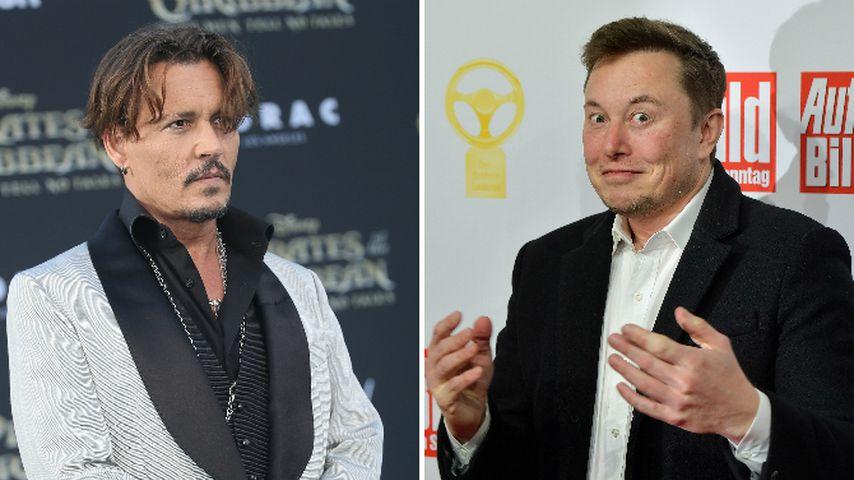 Johnny Depp drohte, Elon Musk den Penis abzuschneiden