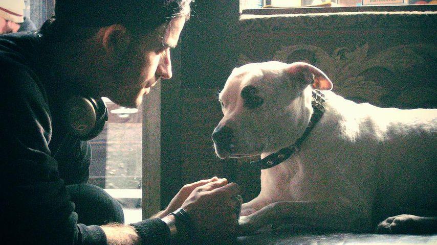 Justin Theroux und Hund Pooma