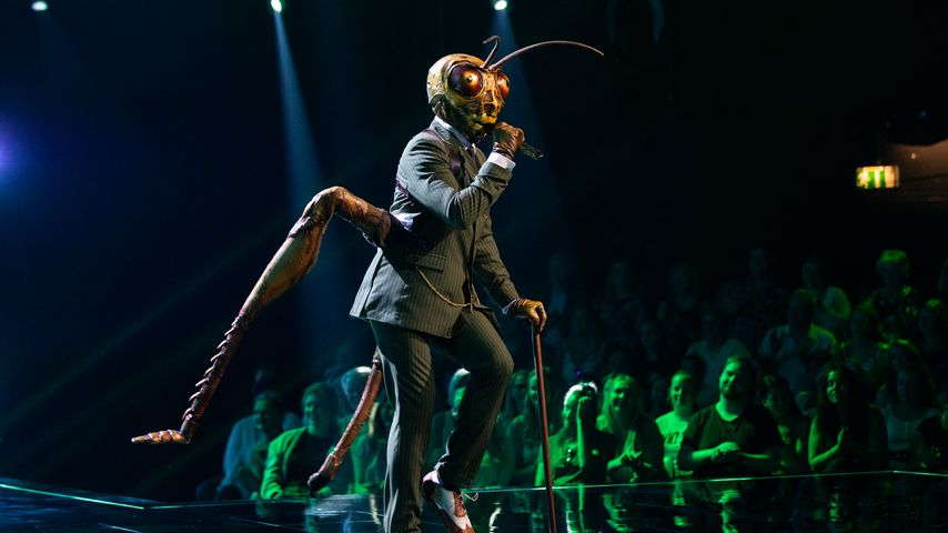 "Kandidat Grashüpfer bei ""The Masked Singer"" 2019 in Köln"