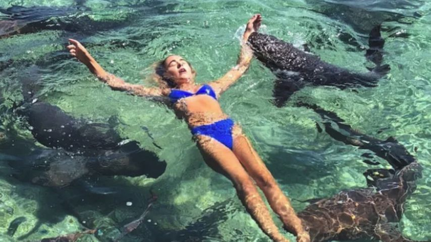 Gebissen: Instagram-Model beim Shooting von Hai attackiert