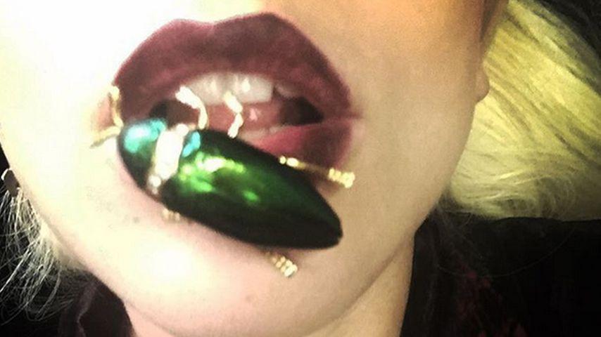 Ein tierisches Accessoire: Lady GaGa hat einen Käfer