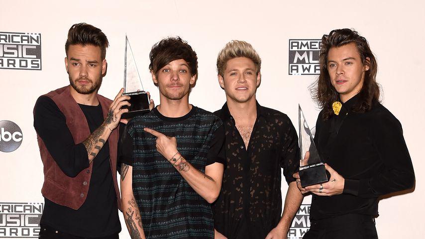 Liam Payne, Louis Tomlinson, Niall Horan und Harry Styles bei den American Music Awards 2015