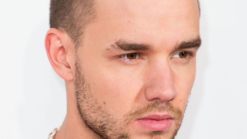 Liam Payne: Verpasst er den Geburtstag von Baby Bear?