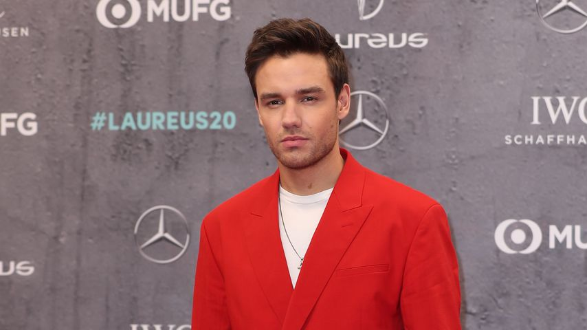 Liam Payne, Musiker